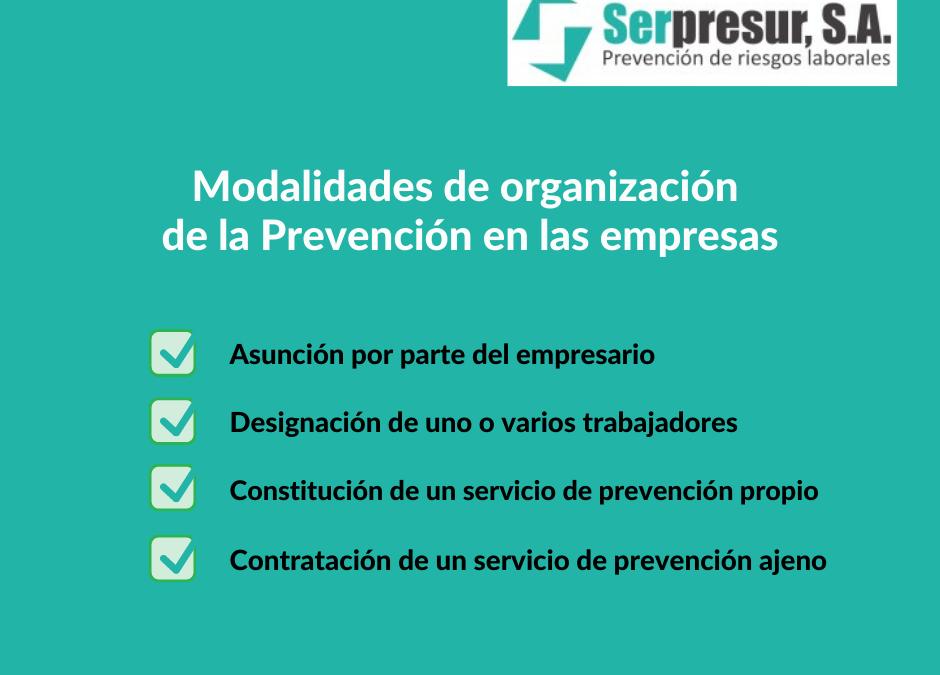 modalidades-de-organizacion-de-la-prevencion.1